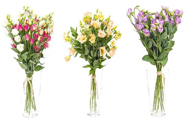 Как сделать так что бы цветы долго стояли 770