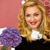 Мадонна и гортензии