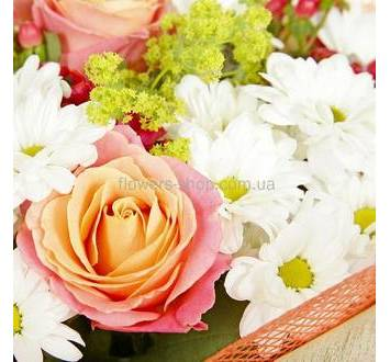 Роза Мисс Пигги, хризантема, гиперикум
