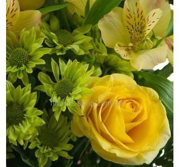 Желтая роза, альстромерия, зеленые хризантемы