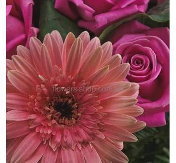 Розовые розы, герберы, сборный букет