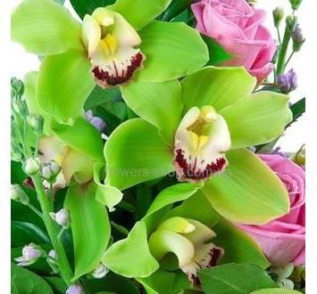 Зеленые орхидеи цимбидиум, розовые розы, декоративная зелень