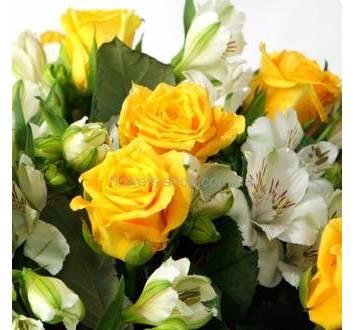Желтые розы, белые альстромерии