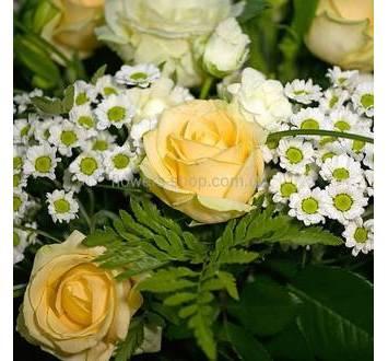 Кремовые розы, мелкая хризантема, ледерварен