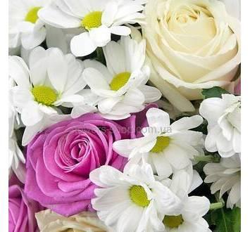 Ромашковые хризантемы, розы, ледерварен