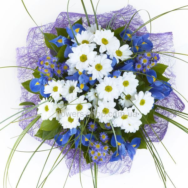 Цветы ирисы купить в мариуполе шуточный подарок начальнику на юбилей