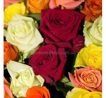 Красные, белые, желтые, оранжевые розы