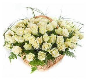 Bucket of white roses