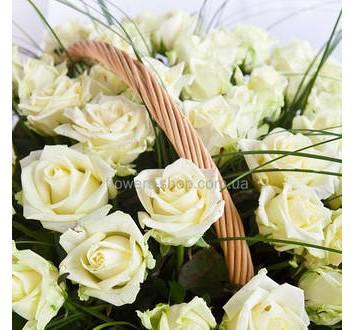Белые розы, берграс
