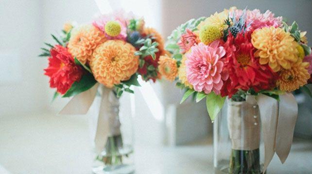 осенние цветы2
