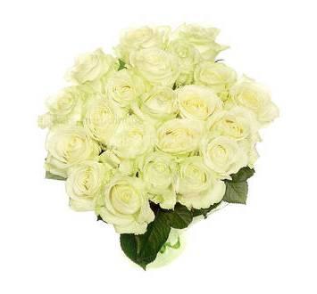 white_rose_21_1.jpeg