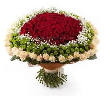 Огромный букет их роз красного и кремового цвета, зеленых хризантем и гипсофилы, в декоративной сизали