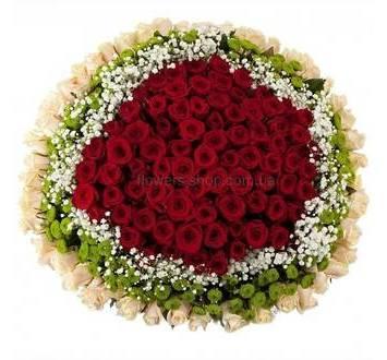 Букет из 159 роз, хризантем и гипсофилы