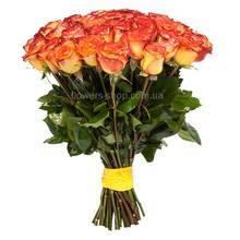 Желто-красный импортные розы Циркус