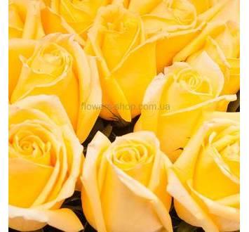 Желтые розы производства Эквадор