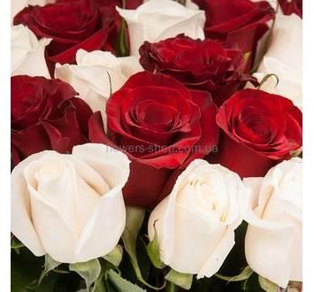 Импортные красные и белые розы