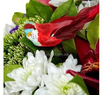 Белые хризантемы, трахелиум, орхидея, декоративная птица