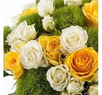 Букет из роз Илиос, белых кустовых роз и диантусов