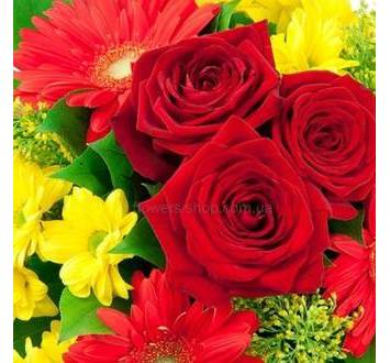 Розы престиж, красные герберы, желтые хризантемы