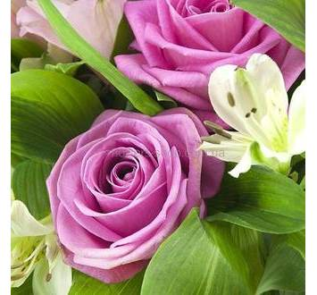 Розы аква, белые и розовые альстромерии, зелень