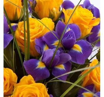 Желтые розы, ирисы, берграсс