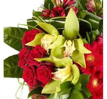 Зеленая орхидея цимбидиум, красные розы и герберы, альстромерии, зелень берграсса и аспидистры