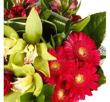 Орхидеи цимбидиум, красные герберы, альстромерии, декоративная сетка