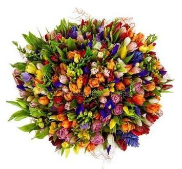 Большой букет из ирисов, тюльпанов, фрезий, альстромерий и зелени