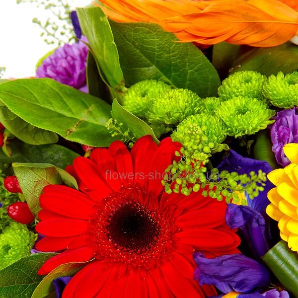 Фантастика купить цветы подарок пожелой женщине