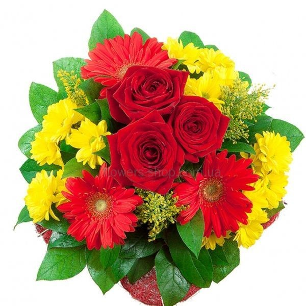 Заказ цветов в кировограде купить пузырек гавайской розы