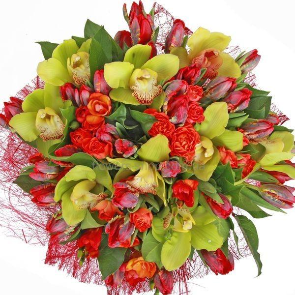 Большой букет роз алых роз