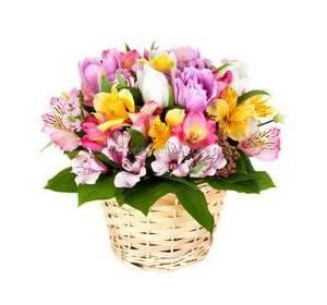 Альстромерии и тюльпаны с лимониумом в кашпо