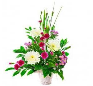 Цветочная корзина из хризантем, гербер и гвоздик, с зеленью рускуса и берграсса