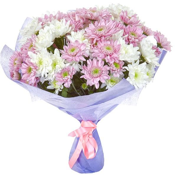 Купить розы в одессе недорого где купить недорогие цветы в екатеринбурге