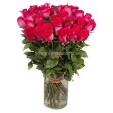 импортные розы ярко-розового цвета