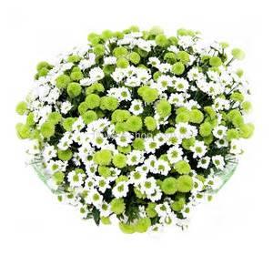 Купить цветы симферополь
