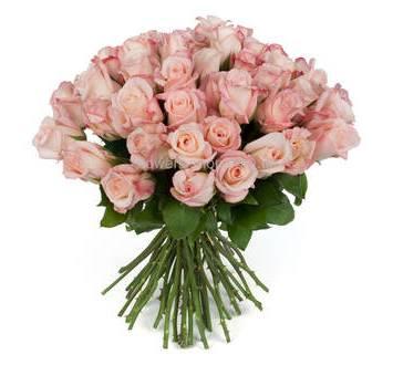 Кенийские розы сорта Эмоушн