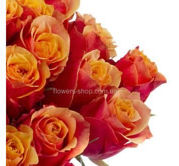 Импортные оранжевые розы