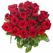 Букет из красных роз перевязанных лентой