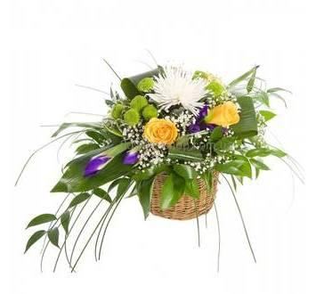 композиция в кашпо из роз, ирисов и хризантем, с зеленью рускуса и аспидистры