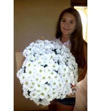 Оберемок з 51 ромашки для дівчини в Києві