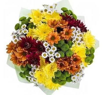 Круглый букет из кустовых хризантем разных сортов, в упаковке
