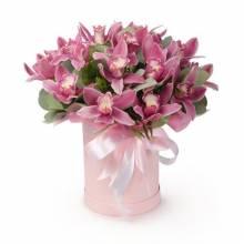 orhid_pink_box.jpeg
