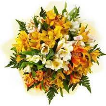 Букет из альстромерий желтого и оранжевого цвета