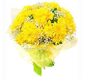 Букет веточных желтых хризантем, с гипсофилой, в упаковке