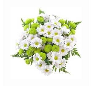 Букет из белых ромашковых и зеленых хризантем