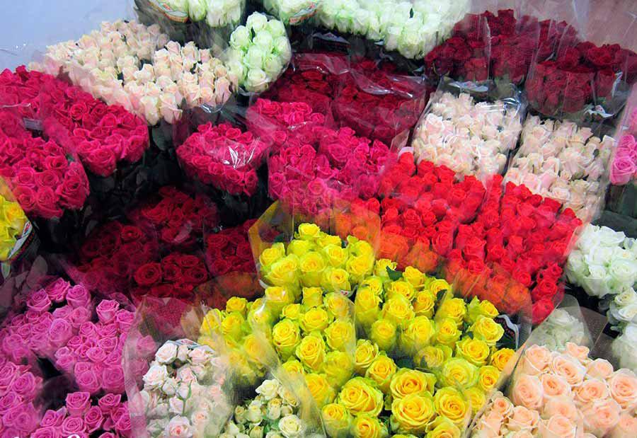 Оптом свежесрезанные цветы челябинск цены
