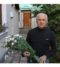Доставка в Житомир розовых эустом
