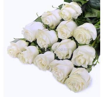 Белые колумбийские розы поштучно