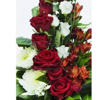 strong2_flowersbay_1024_10.jpeg